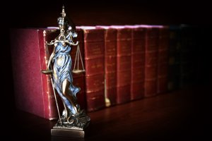 Reproductive Lawyer for Egg Donation, Inc.