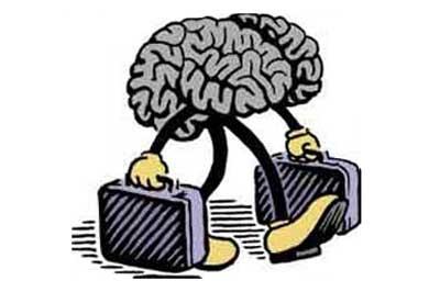 Billedresultat for brain drain