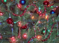 Event: Lights In The Parkway - Dec 6-31