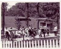 Vintage Dorney Park Images