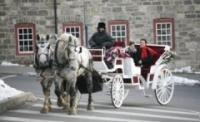 Event: Scenic Horse Drawn Carriage Rides - Dec 12-31