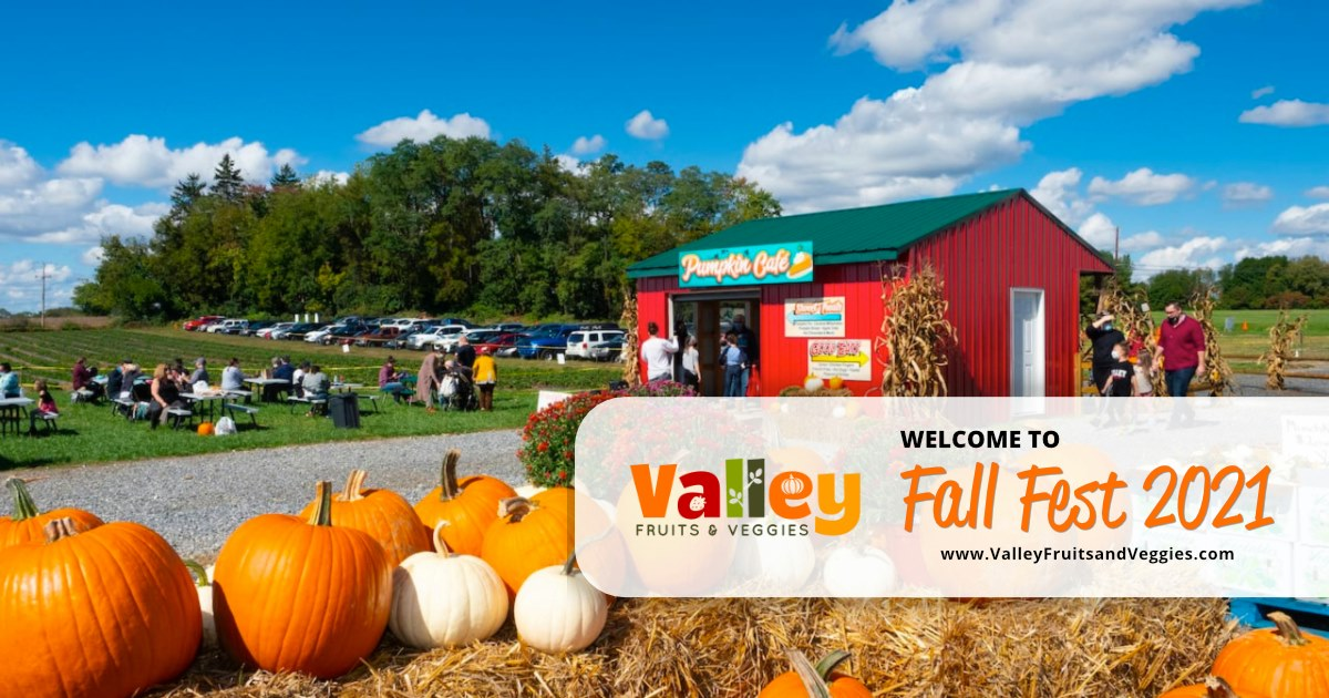 Event: Lehigh Valley Elite Network Business Networking Event At Texas Roadhouse - Sep 30 @ 11:00am