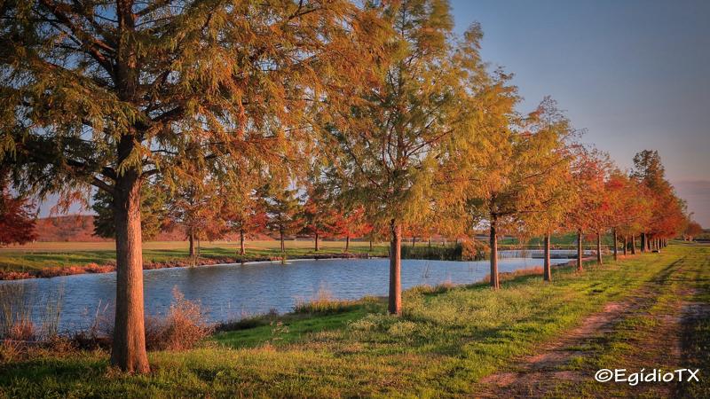 Northeast Metropolitan Park
