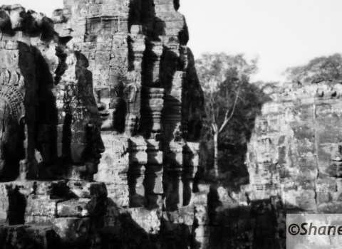 Angor Wat Faces