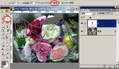 cut_4.jpg