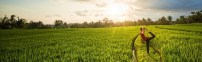 25.-Yoga-in-the-ricefields-by-Blooming-Yoga-copy-640x360