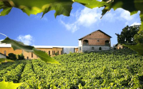 Casa Valduga se destacou entre outras 60 vinícolas - Foto: Divulgação