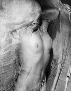Nude under wet silk