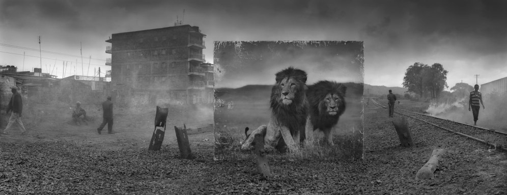 RAILWAY-LINE-WITH-LION-BROTHERS