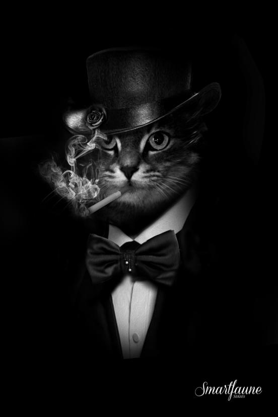fantasmagorik-square-smart-faune-chat