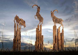 driftwood-bouc-by-sculptor-james-doran-webb3__880