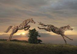 sculptures-animaux-bois-james-doran-webb-3-720x508