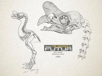 10-tyrannornis-squelette-1024x767