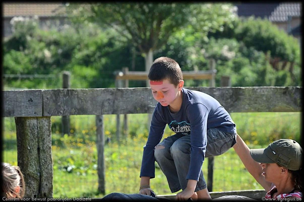 centrum voor bewust paardrijden Dadizele 2