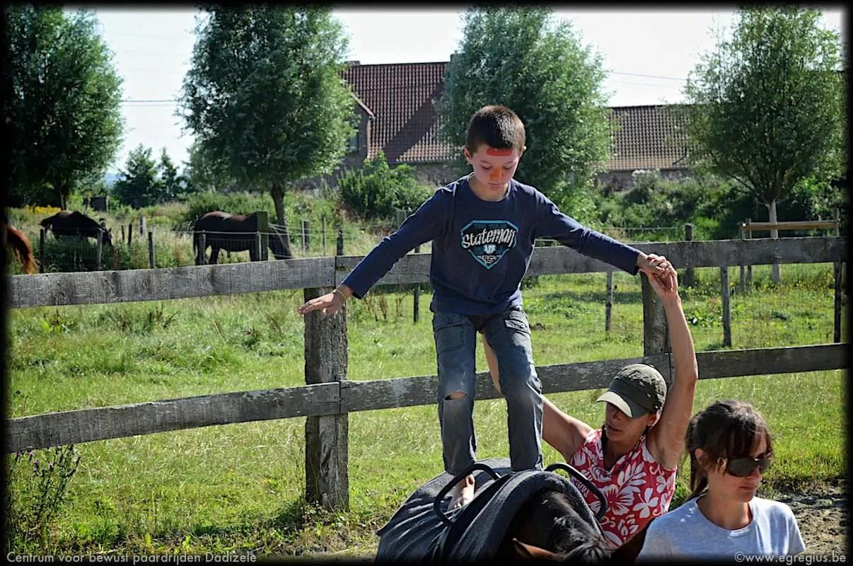 centrum voor bewust paardrijden Dadizele 4