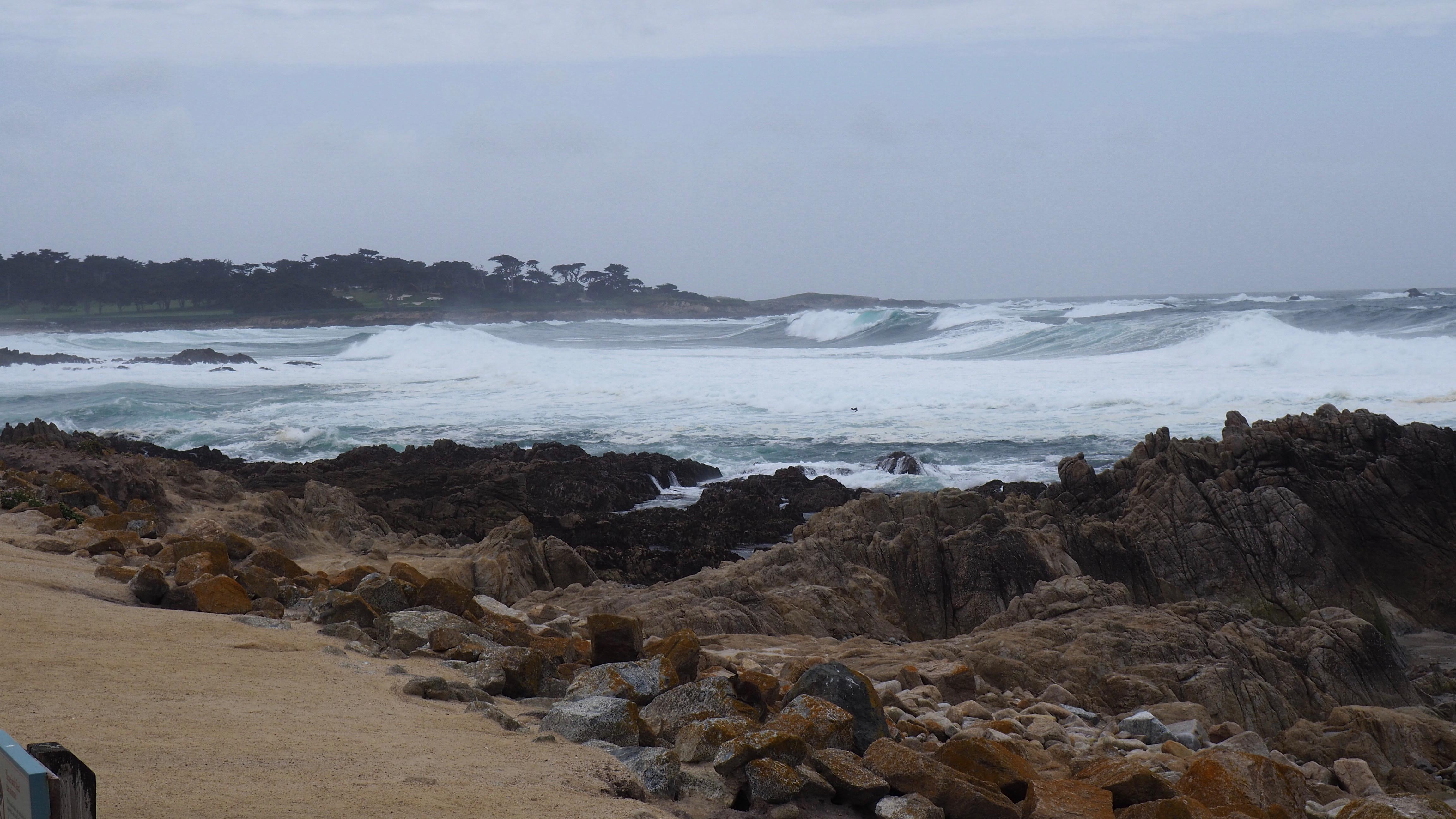Coastline along the 17 mile drive.