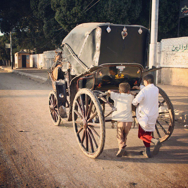 Horse carts on the streets of Maghagha city in Minya. Photo by Mohamed Ali Eddin