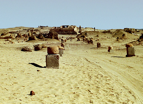 View towards the South Temple at Karanis