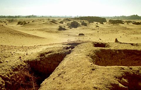 Ancient Bacchias