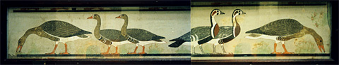 The Meidum Geese (Cairo Egyptian Museum)