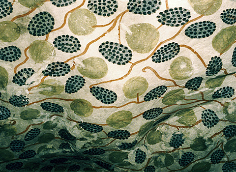 Grape ceiling in Sennefer's tomb