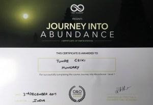 Certificate Journey into Abundance 1