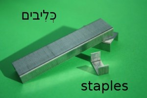 How to Say Staples in Hebrew