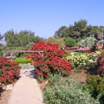 Want to Learn Hebrew?: Work on a Kibbutz in Israel!