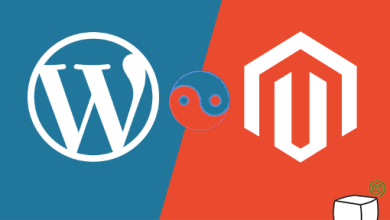 Photo of All you need to know about Magento WordPress