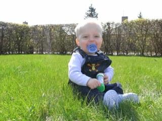 Casper i det grønne græs