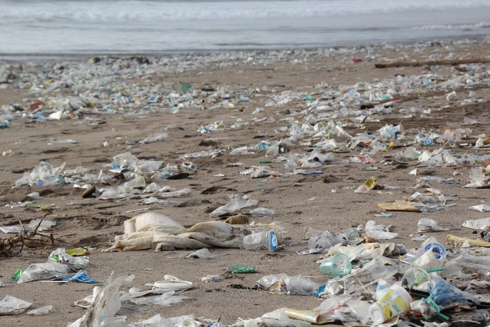 Plastic Pollution in Hawaii