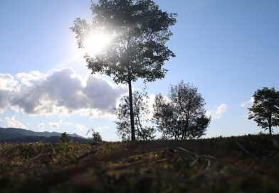 [eiberri.eus] Los fuertes vientos de hoy darán paso a un fin de semana gris