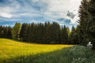 Frauenau, Bayerischer Wald, Deutschland.
