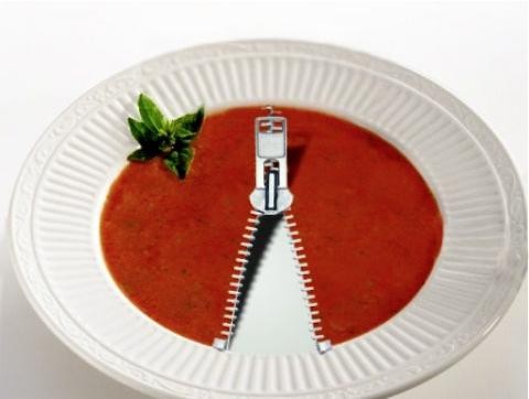 fly_soup