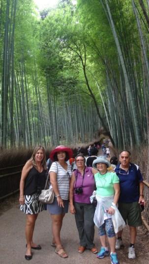 15-06-2016_kyoto_bamboo-grove_09