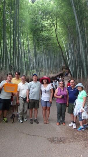 15-06-2016_kyoto_bamboo-grove_10