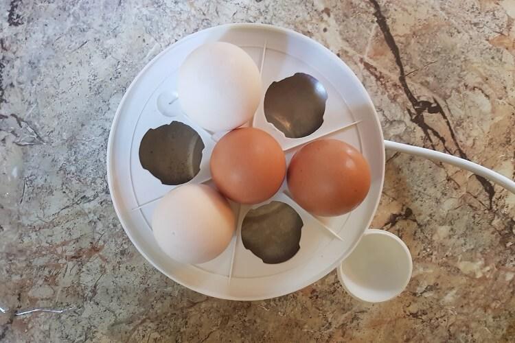 Eier kochen im Eierkocher