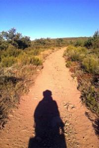 """""""Nur mit meinem Schatten unterwegs. Auf dem Weg nach Molinaseca."""" So lautet der Titel dieses Bildes, das der Gemünder Pilger Georg Gnädig im vergangenen Jahr auf seinem Weg nach Santiago de Compostela machte.Bild: Georg Gnädig"""