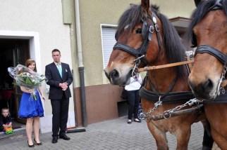 Die Pferdekutsche wartet vor dem Haus der Maikönigin. (Foto: Reiner Züll)