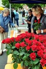 Die Hilfsgruppe bedankte sich bei den Eifeler Frauen mit 1000 roten Rosen, die das Schleidener Blumenhaus Geschwind gestiftet hatte. (Foto: Reiner Züll)