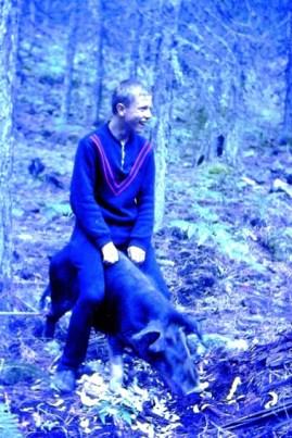 Nachdem die Pfadfinder eine der Schweine gefangen hatten, wagte Franz Wegmann einen Ritt auf der Sau. Repro: Reiner Züll