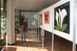 Beim traditionellen Herbstsalon verwandelt sich das Kreishaus in ein Kunstatelier. Foto: Medienzentrum Kreis Euskirchen