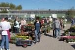 NEW_Blumenmarkt2