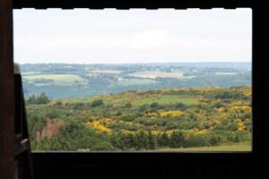 Von der Rothirsch-Aussichtsempore aus hat man einen schönen Blick auf das Eifelgold. Bild: Michael Thalken/Eifeler Presse Agentur/epa