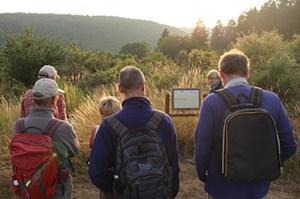 """Das Netzwerk """"Kirche im Nationalpark Eifel"""" bietet bis Oktober einmal im Monat kostenlos eine begleitete spirituelle Wanderung auf dem Schöpfungspfad an. Foto: Nationalparkverwaltung Eifel/M. Weisgerber"""