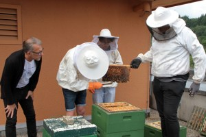 Behutsam wird der Bienenstock geöffnet, um die mit Honig gefüllten Wabenrahmen zu entnehmen. Bild: Michael Thalken/Eifeler Presse Agentur/epa