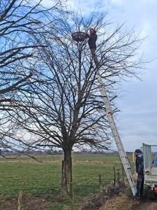 """Mit Blick auf die Umwelt: In Vettweis hat das Team von """"F&S concept"""" Nisthilfen für Greifvögel installiert. Foto: F&S concept"""
