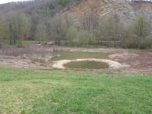 Am Steinbruch im Eschweiler Tal wurde jetzt ein Folienteich angelegt, um das angrenzende Laichgewässer dauerhaft und länger mit Wasser zu versorgen. Foto: Daniel Boos / UNB