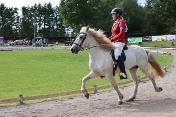 Auf der Pferderennbahn zeigten über 180 Reiterinnen und Reiter ihr Können. Bild: Michael Thalken/Eifeler Presse Agentur/epa