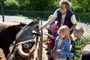 Reiner Bauer, Vorsitzender des Tierschutzvereins Mechernich, ist stets im Einsatz für seine Schützlinge. Foto: Tameer Gunnar Eden/epa